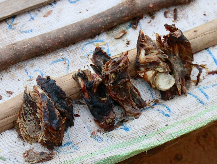 Antilope meat from the rainforest in Mambasa.  (Photo: Robert Vawter)